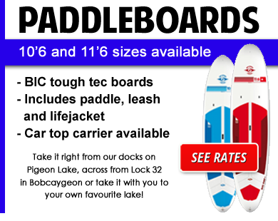 paddle-board-2017-final.png